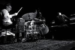 Bruger Geremy Trio